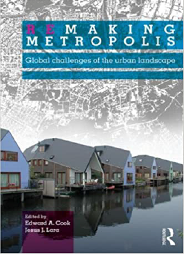 Remaking Metropolis : Global Challenges of the Urban Landscape Book Cover