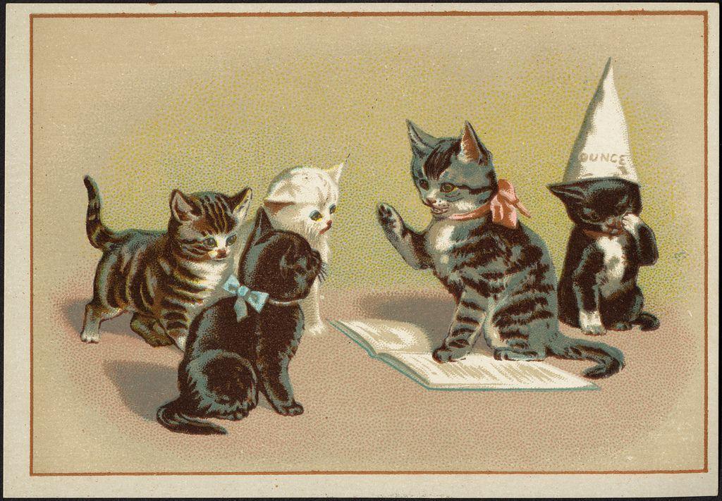Five_Cats.jpg