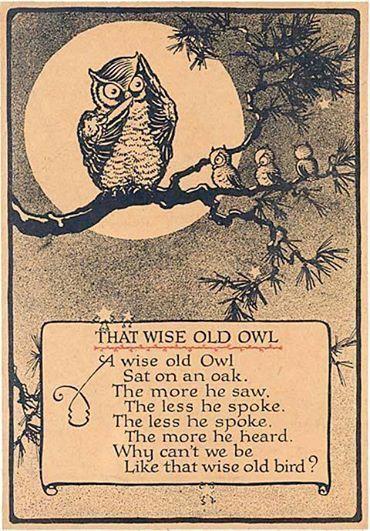 Wise_Old_Owl.jpg