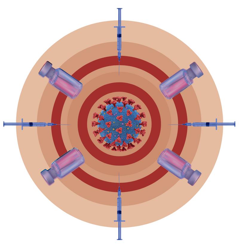 Understanding Vaccines - Display Theme Image
