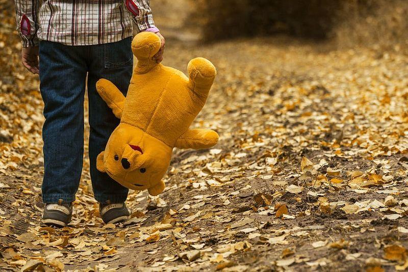 child-dry-leaves-kid-plush-toy.jpeg